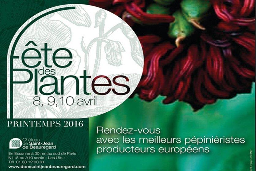 La f te des plantes saint jean de beauregard 91940 - Fete des plantes saint jean de beauregard ...