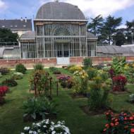 SERRES TROPICALES DU JARDIN DES PLANTES DE NANTES - Parcs et jardins ...