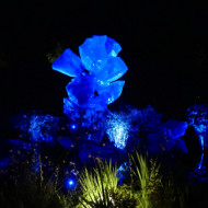 Festival International des Jardins de nuit