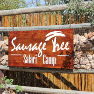 Sausage Tree Camp
