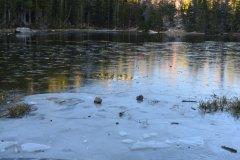Vue sur le Bear Lake glacé, Rocky Mountain National Park. (© Nelly  JACQUES)