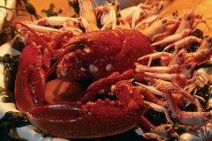 Assiette de crustacés. (© TONY CARDWELL - ICONOTEC)