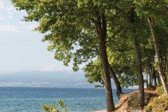 Le long de la côte de Njivice, côte ouest de Krk. (© Matej Vuga - iStockphoto)
