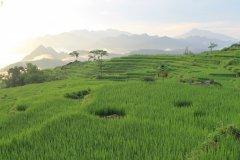Réserve de Pu Luong, province de Thanh Hoa. (© Amica Travel)