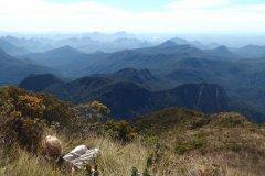 Repos au sommet du parc national de Marojejy. (© Maïlys ALBERTO)