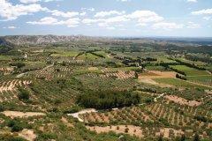 La chaîne des Alpilles et ses champs d'oliviers près des Baux-de-Provence. (© Stéphan SZEREMETA)