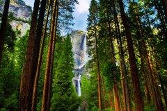 Yosemite National Park. (© Lorcel - Shutterstock.com)