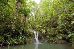 Cascade dans la forêt de Colo i Suva. (© Martin Prochazkacz - Shutterstock.com)