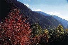Paysage d'Encamp en automne (© Ministère du Tourisme du Gouvernement d'Andorre)