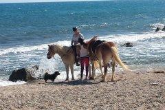 Équitation au bord de l'eau. (© Alex VUCKOVIC)