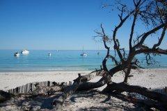 La plage de Saleccia (© XAVIER BONNIN)