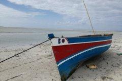 La plage de Quirimba. (© Elisa Vallon)