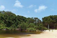 Parc national de Pongara. (© tropicalpixsingapore)