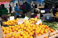 Oranges sur le marché de Loulé. (© Maxence Gorréguès)