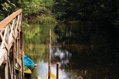 Le Camp Cariacou, sur la crique Balata. (© Philippe GUERSAN - Author's Image)