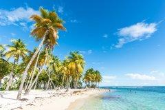 Plage de la Caravelle, Guadeloupe. (© Jakob Fischer - Fotolia)