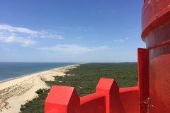 Vue depuis le phare de la Coubre. (© Phare de La Coubre)
