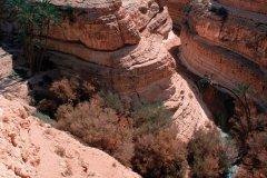La grande cascade de Tamerza. (© Author's Image)