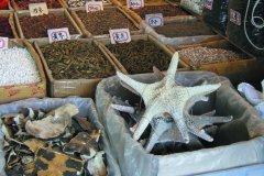 Serpents, étoiles des mers ou tortue dans le marché de Huangsha. (© Stéphan SZEREMETA)