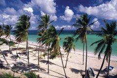 Plage de la Martinique. (© Author's Image)