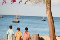 Zanzibar (© Tobias Zetterlund-Fotolia)