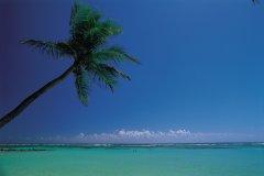 Les eaux turquoise de la Guadeloupe. (© Tom Pepeira - Iconotec)