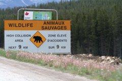 Panneaux routiers signalant des animaux sauvages. (© Stéphan SZEREMETA)