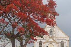 La Cathédrale ND de l'Assomption à Boma (© M. Gemoets)