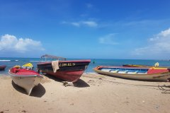 L'authenticité de Treasure Beach. (© Chloé OBARA)