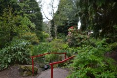 Les jardins botaniques de Belfast. (© Juliette  MANTELET)