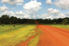 Piste reliant Kédougou à Salemata (début saison des pluies). (© Stéphanie BORG)