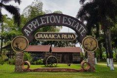 La rhumerie Appleton Estate. (© Chloé OBARA)