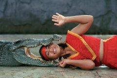 Spectacle de crocodiles au Sri Ratcha Tiger Zoo. (© Author's Image)