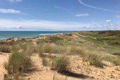 Dune plage de Sauveterre. (© Linda CASTAGNIE)