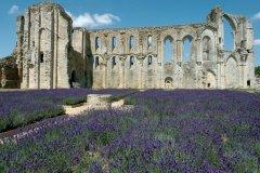 L'abbaye Saint-Pierre de Maillezais (© GILLES OSTER - FOTOLIA)