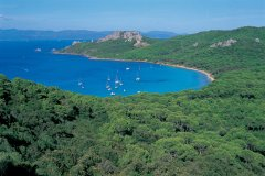 PROVENCE : Crique sur l'île de Porquerolles - HUGO CANABI - ICONOTEC