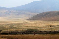 Paysage de l'aire de conservation du Ngorongoro (© Stephan SZEREMETA)