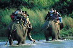 Parc national de Chitwan où l'on se promene à dos d'éléphant. (© Hugo Canabi - Iconotec)