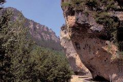 Gorges du Tarn (© Alamer - Iconotec)
