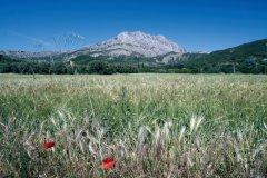 La montagne Sainte-Victoire. (© CREADESIGNER - FOTOLIA)