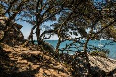 Le Bois de la Chaise. (© Thomas Pajot - stock.adobe.com)