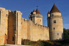 Le château de Blandy-les-Tours (© Australian Dream - Fotolia)