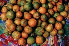Oranges (© Author's Image)