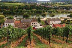 Schengen, village de la route des vins. (© Philippe GUERSAN - Author's Image)