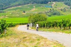 Vélo dans les vignes de Kaysersberg. (© Suratwadee Rattanajarupak - Shutterstock.com)