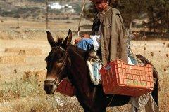 Transport à dos d'âne. (© Author's Image)