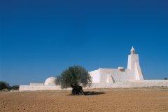 Mosquée sur la route vers Midoun. (© Author's Image)