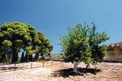 Cour pavée de l'entrée du site minoen de Cnossos. (© Author's Image)