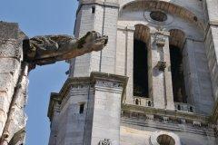 Gargouille de la cathédrale Notre-Dame de Senlis (© Arap - Fotolia)
