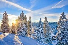 Les massifs de la Forêt Noire en hiver. (© 1234zoom - Shutterstock.com)